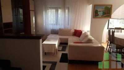 Empty house for rent in Skopje, Vodno with living area of 250 m2.  Extras: AC, Central Heating, Kitchen elements, Kitchen appliances.  Cost: 1000 EUR